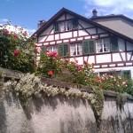 pretty_house